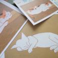 守一さんの猫。 M Kumagai Cats