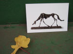 Giacometti Dog