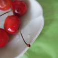 佐藤錦。 Japanese cherry