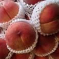 大玉。 Peaches