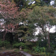 寺カフェ。 Temple café