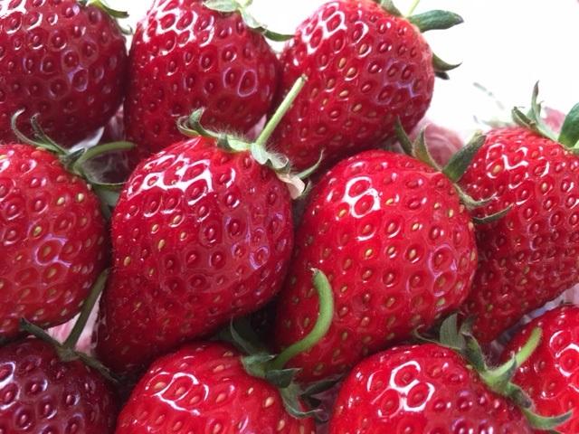 お菓子的な。 Strawberries